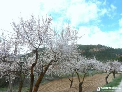 Valle Cabriel-Manchuela conquense;pueblos negros guadalajara peneda geres puerto de canencia collado